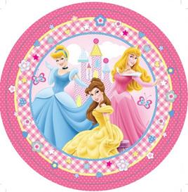 Disney princess 40 piece pack.
