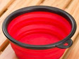 Dog Bowl - collapsible