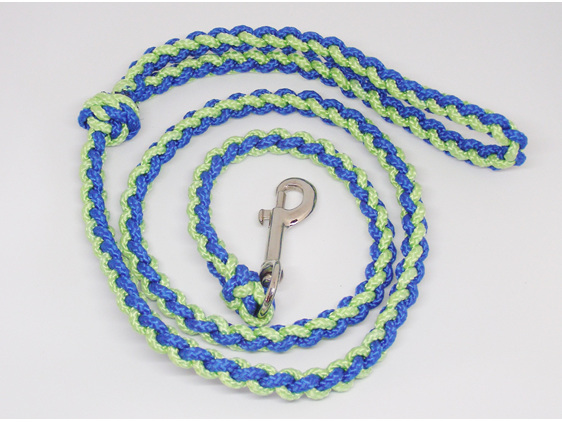 Dog lead, blue and light green