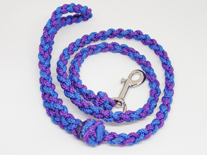Dog lead in purple and blue