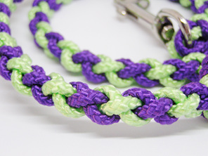 Dog lead in purple and green with spring clasp