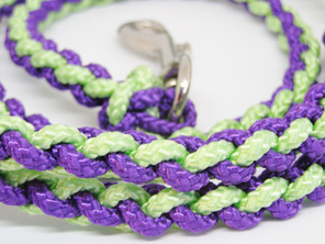 Dog lead in purple and light green with spring clip