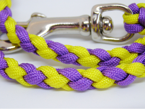 Dog lead in purple and yellow with spring clip