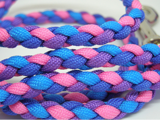 Dog lead pink, purple, dark blue, light blue