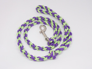 Dog lead, purple and green