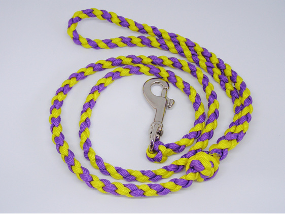 Dog lead, purple and yellow