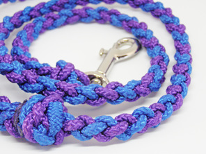 Dog lead, purple, blue