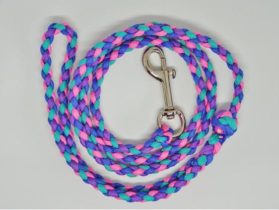 Dog lead, purple, pink, blue, green