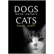 Dogs Cats Fridge Magnet