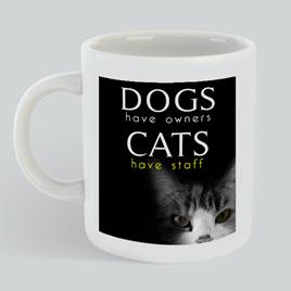 Cat Have Staff Mug