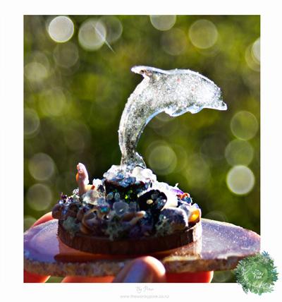 Dolphin - Jewels of the Sea - Moondusty