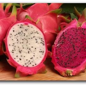 Dragonfruit Flavour Concentrate