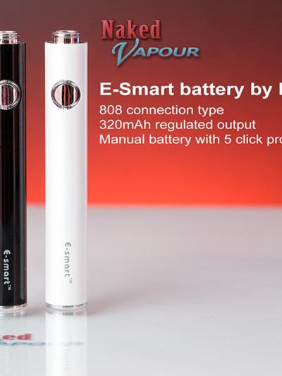E-smart battery - 808 type