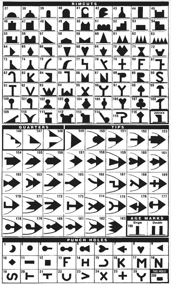 Earmarker Shape Chart
