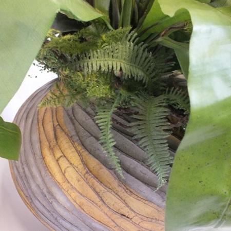 Earthenware Vase Twist Design C0295
