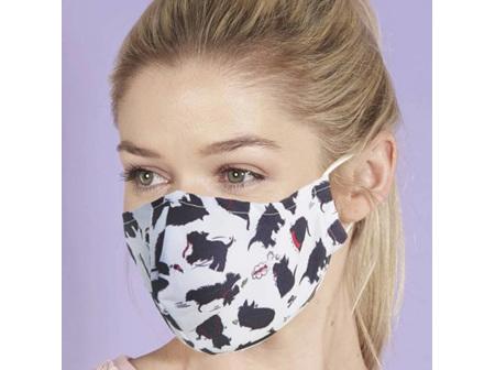 EC Adult Reusable Face Mask w Filter Pocket Assorted