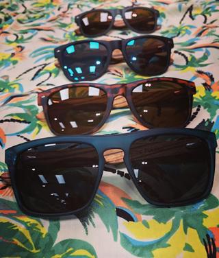 Electric Pukeko Sunglasses