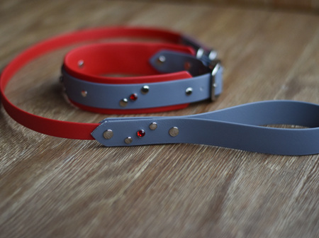 Embellished Collar and Lead Set