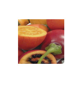 enquire about other quantities of tamarillos