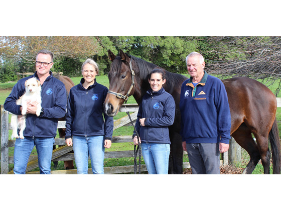 Equine & Large Animal Veterinarians