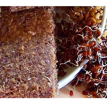 Essene Organic Raw Sprouted Bread - Spelt