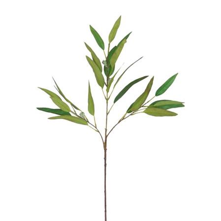 Eucalyptus  Green 4572