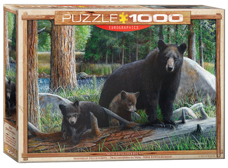 Eurographics 1000 Piece Jigsaw Puzzle: New Discoveries