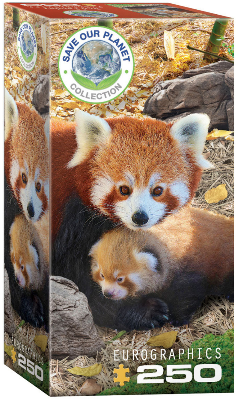 Eurographics 250 Piece Puzzle Red Panda buy at  www.puzzlesnz.co.nz
