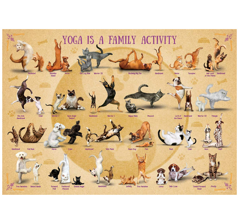 Eurographics 500XL Piece Puzzle:Yoga Family Activity at www.puzzlesnz.co.nz