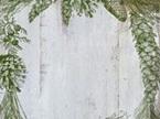Evergreen IOD Decor Stamp