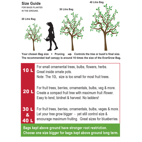EverGrow Bag Size Guide