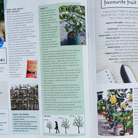 EverGrow Bags receive great review from Edible Backyard's Kath Irvine