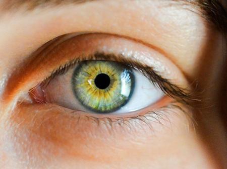 Eye & Ear Health