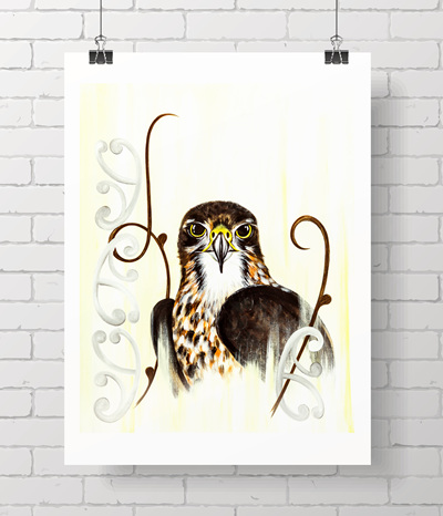 falcon karearea