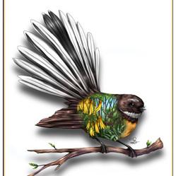 Fantail Birds Eye View - Card
