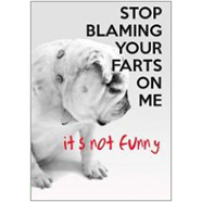 Farts Fridge Magnet