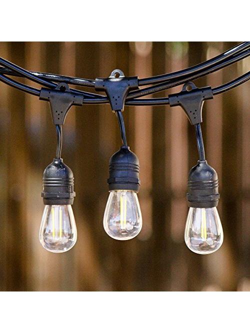 festoon light bulbs, exchangeable festoon bulbs, outdoor bulbs