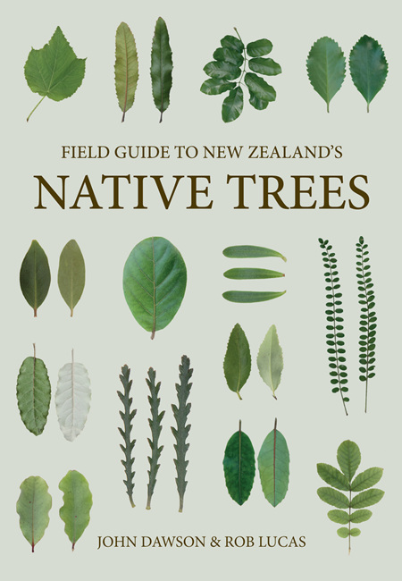 Field Guide to Native Trees Revised - John Dawson & Rob Lucas