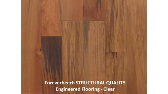 Finishing kit, clear, oil, hardwood floor, foreverbeech engineered flooring
