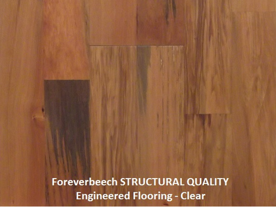 Finishing kit, clear, oil, hardwood floor, foreverbeech engineered flooring