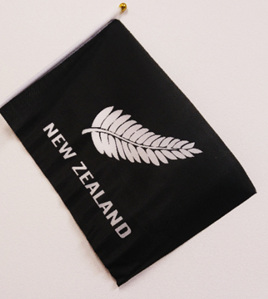 Flag Cloth on Stick Silver Fern 300mm x 450mm