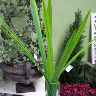 Flax Grass 1053