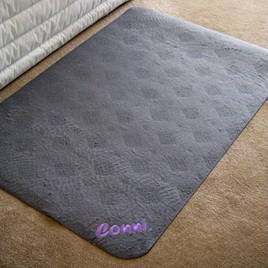 Floor Mat - Absorbent & Washable