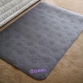 Floor Mat - Absorbent & Washable