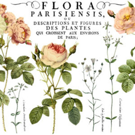 Flora Parisiensis IOD Decor Transfer