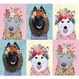 Floral Pets 12910107