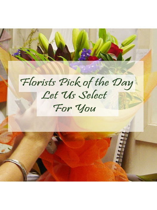Florist pick of the day