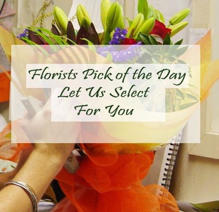 Florists Pick of the Day Bouquet