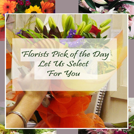Florists Pick of the Day Bouquets & Posies