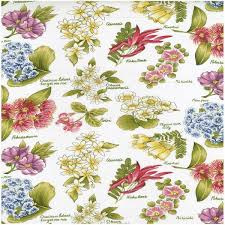 Flowers of Aotearoa Cream
